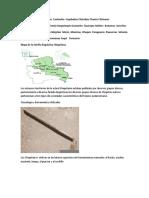 ANTROPOLOGIA DEL ORIENTE BOLIVIANO