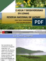Gestión Del Agua y Biodiversidad Em Lomas LACHAY