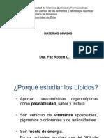 Materias_grasas