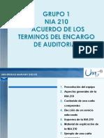 Presentacion Nia 210