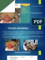 trauma de abdomen resumen