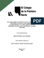 TESIS-Lara-Enríquez-Blanca-Esthela.pdf