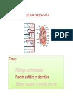 Sistema Cardiovascular II