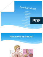 Bronko Malasia