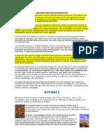 SANTUARIO NACIONAL DE MEGANTONI.pdf