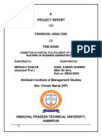 PNB Project Report on Financial Analysis