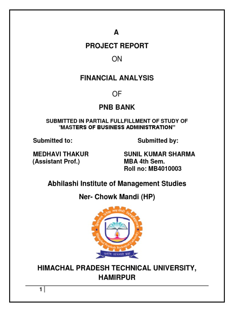 project report on npa of pnb
