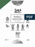 (04 102 p.) Rojas Mix, América imaginaria
