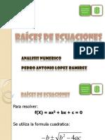 Biseccion.pdf