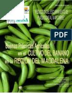cartilla-banano-definitiva