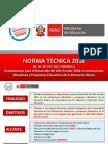 Norma-Tecnica-2018.pptx