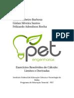 Livro-ExerciciosResolvidosCalculo_VersaoAtual