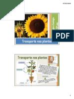 Leitura Complementar - o Transporte Nas Plantas