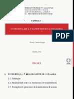 1.introdução.a.transferência.de.massa