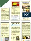 TRÍPTICO PLATO TIPICO JUANE.pdf