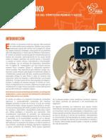 Boletin_cerenia y El Vomito en Perros y Gatos