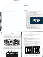 DENEVICap5,ElObjetivo.pdf