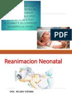 Aula 03 - Reanimacion Neonatal (1)