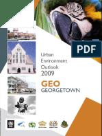 2010 GEO Georgetown