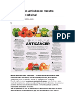 24 alimentos anticáncer