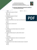 Cuestionario Para El Analisis y Medicion de Produccion de Camisetas Peruanas