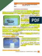 Fisiopatologia - Hipertension intracraneana