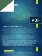 La Célula-Estrutura Y Funciones.. DAGC2018