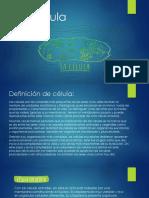 La Célula-Estrutura Y Funciones.. DAGC2018.pptx