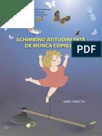 2_munca_maxi_ghid.pdf