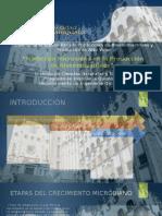 Modelado_Bioprocesos_3