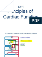 OnlineMedEd Whiteboards Preview | Cardiovascular System