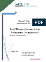 Les Effluents Industriels Et Artisanaux (Les Tanneries)