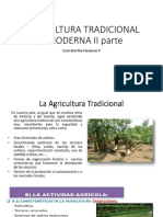 AGRICULTURA TRADICIONal y moderna.pptx