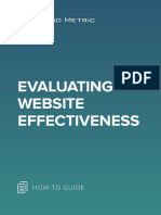 Evaluating Website Effectiveness