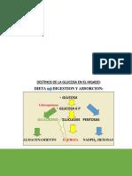 Clase 8 Glucogenogenesis y Pentosas