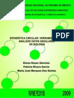 Estadiistica Circular