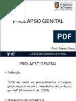 6469652 Assunto 02 Prolapso Genital