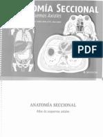 Anatomia Seccional de Clasca
