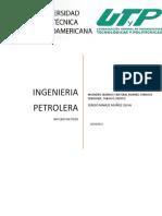 NUCLEOS DE POZO.docx