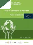 GUIA ENTREVISTA.pdf