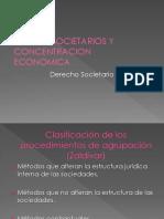 Grupos Societarios y Concentración Económica -Clase 2015 (1)