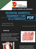 tb pulmonar gpc 2016 msp.pdf