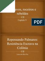 Escravos, Roceiros e Rebeldes