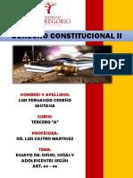 Ensayo constitucional niños niñas y adolescentes
