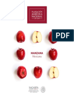 B_sico-Manzana.pdf