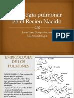 Fisiología Pulmonar en El Recién Nacido