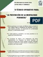 Lineamiento Técnico Mortalidad Materna y Perinatal