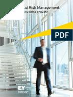 EY Fraud Risk Management