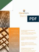CleverData - Posibles Focos de Atención