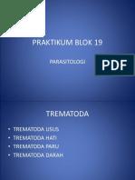 PRAKTIKUM BLOK 19 TREMATODA.ppt